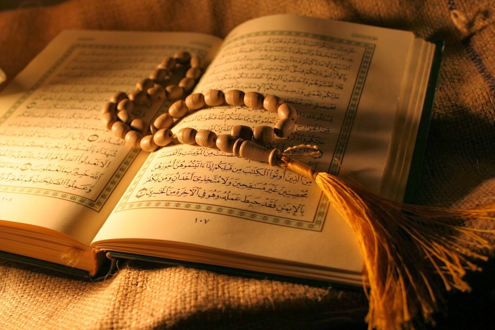 Saving humanity without holy Quran not possible - International Shia News  Agency
