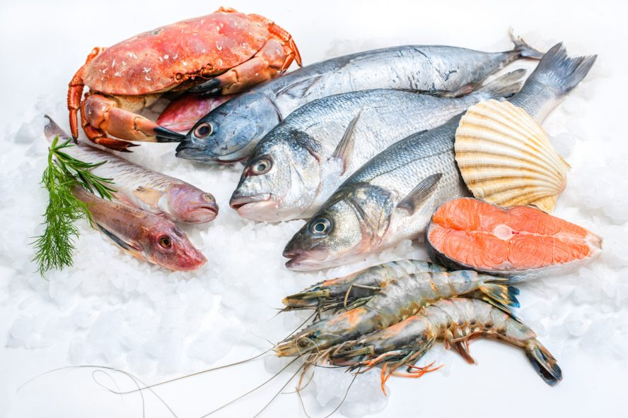 Common Halal and non-halal Sea foods - International Shia News Agency