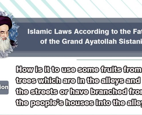 Islamic Law on use fruits in streets