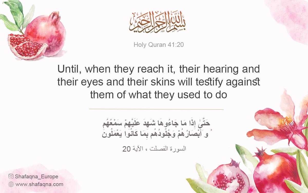 Quran 41:20