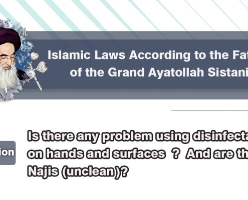 Islamic law, Ayatollah Sistani