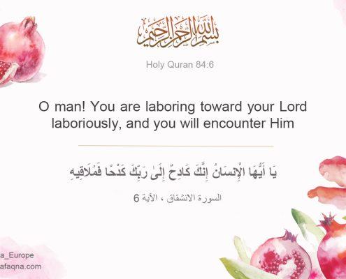 Quran 84:6