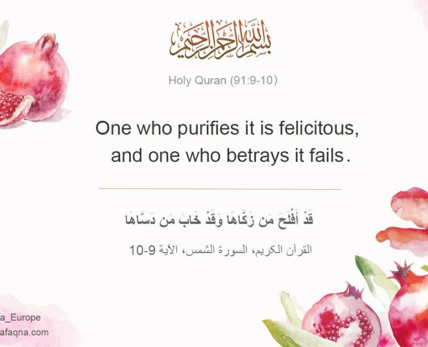 Quran 91:9-10