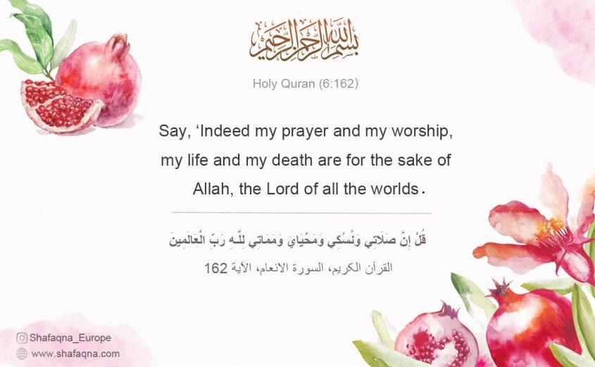 Quran 6:162