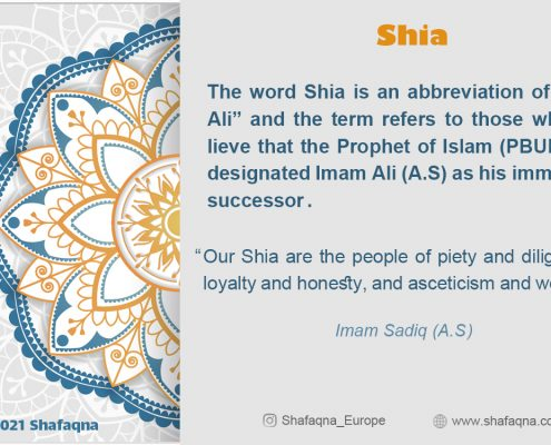 Shia, Shia Islam, Shia Graph