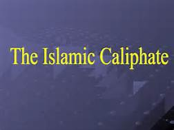 What did Imam Ali (AS) do about illegal wealth when he became the Islamic Caliph?